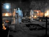 Video : Multiple Bodies On One Pyre In Delhi's Crematorium