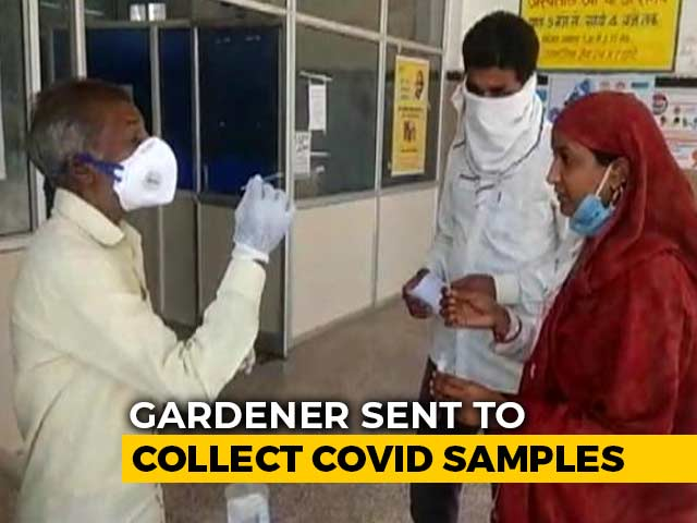 Gardener Collects Covid Sample, Madhya Pradesh Health Minister Campaigns