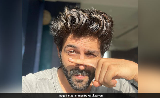 Kartik Aaryan's 14-Day 'Vanvas' Ends With Negative COVID-19 Test