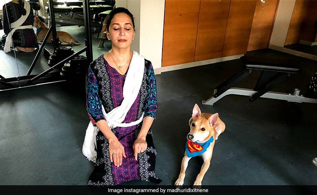 World Health Day 2021: Madhuri Dixit's Fitness Mantra Is...