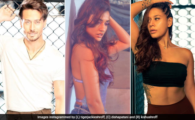 Who Is Smitten By Disha Patani's Pic? Tiger Shroff, Sister Krishna And The Internet