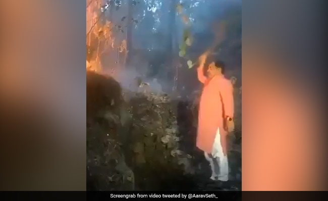 Watch: Uttarakhand Minister Fights Forest Fire With Shrub As He's Filmed