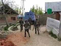 Minor Among 5 Terrorists Killed In J&K, Had Option To Surrender: Cops