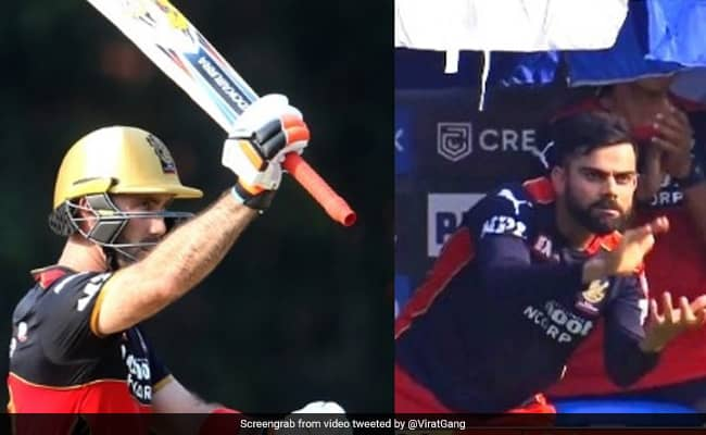 Virat Kohli celebrates enthusiastically as Glenn Maxwell registers consecutive fifties in IPL 2021 Watch video IPL 2021