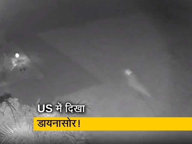Videos : अमेरिका में दिखा डायनासोर! तेजी से वायरल हो रहा वीडियो