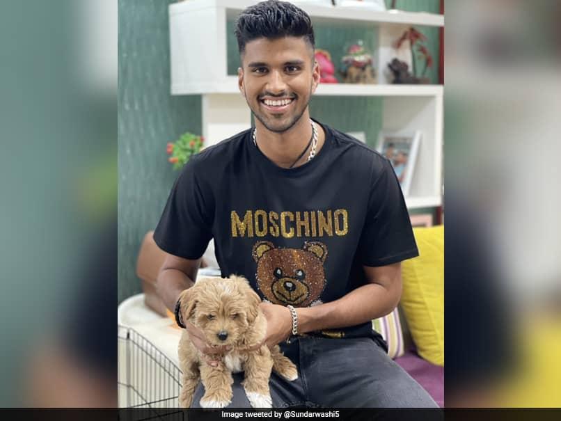 """Meet Gabba"": Washington Sundar Names His Dog After Cricket Stadium In Australia"