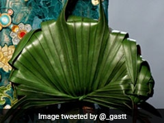Jean-Paul Gaultier's Viral Leaf Bag Has Asian Twitter Users Amused Even After 11 Years