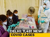 Video : Delhi Records 11,491 New COVID-19 Cases, Highest Single-Day Spike
