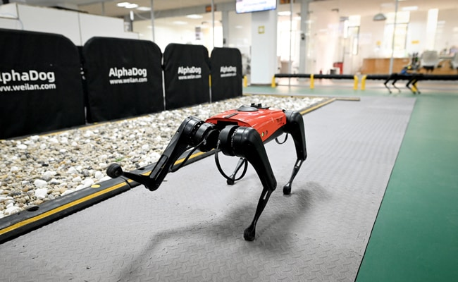 The Ulti-Mutt Pet? Chinese Tech Company Develops Robo-Dogs