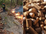 Video : Fallen Leaves Into Briquettes: This Forest In Jharkhand Ends Forest Fires And Creates Jobs