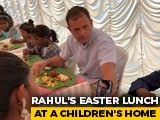"Video : Rahul Gandhi Joined By ""Lovely Virtual Guest"" On Easter In Kerala"