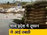 Video: ताउते का असर: मध्य प्रदेश में बरसात से तबाह हुआ करोड़ों रुपये का गेहूं