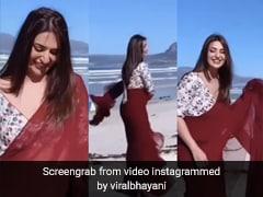 Cape Town में दिव्यांका त्रिपाठी की समंदर किनारे मस्ती, साड़ी में किया शाहरुख के गाने पर शानदार डांस- देखें Video