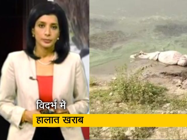 Video : कोरोना : महाराष्ट्र के विदर्भ में हालात चिंताजनक - IMA
