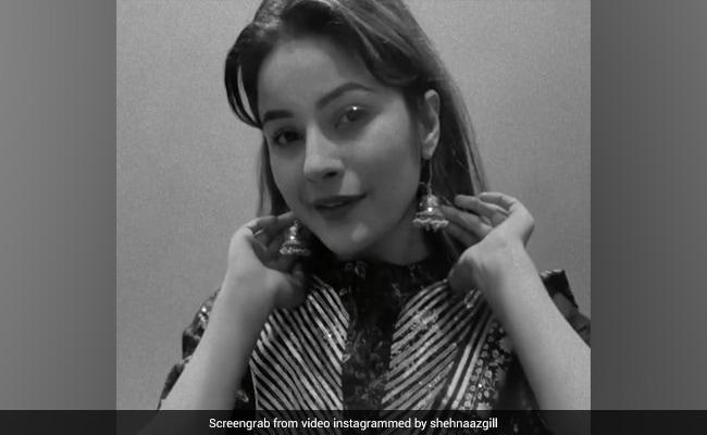 Shehnaaz Gill Dance Video On Juti Kasuri Song Fans Say Original Beauty – Shehnaaz Gill ने जुत्ती कसूरी गाने पर यूं किया डांस, Video देख फैन्स बोलें