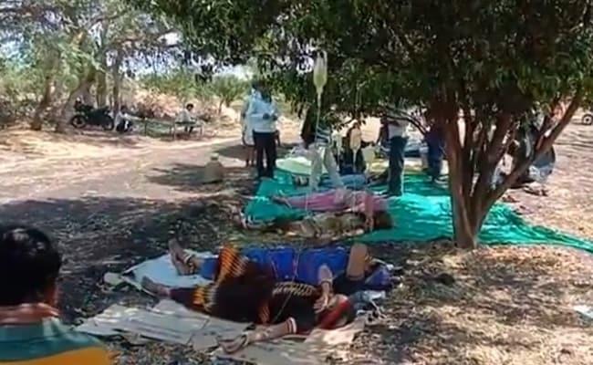 People in rural areas not going hospital taking treatment under trees in an orange orchard – संतरे के बगीचे में पेड़ के नीचे इलाज करा रहे गांवों के लोग, कोरोना वार्ड में भर्ती होने के डर से नहीं जा रहे अस्पताल