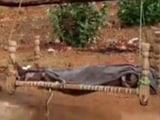 Video : MP: खाट पर बेटी के शव को लेकर चला पिता