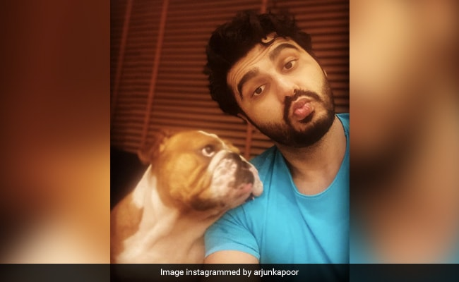 This Is What Malaika Arora Has To Say About Arjun Kapoor Watching His Film With Pet Pooch Max