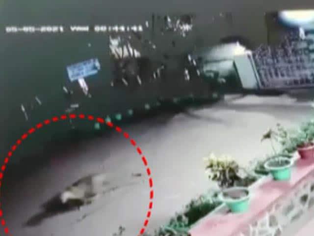 Videos : कैमरे में कैद : नासिक के रिहायशी इलाके में दिखा तेंदुआ