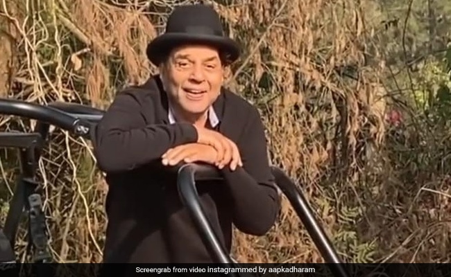 Dharmendra shared the video from the farmhouse, said - Cultivation on the rocky earth, mustard on the palm….