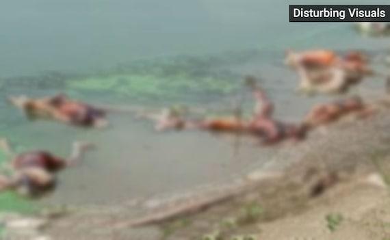 बिहार : बक्सर के गंगा घाट पर लाशों का अंबार, पल्ला झाड़ते हुए बोला प्रशासन- 'हमारी नहीं, UP की लाशें हैं'