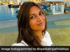"Is The View ""Real Or A Pretty Painting"" In Divyanka's Pics? Teejay Reacts"