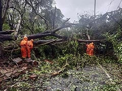 2 Dead, Houses Damaged Due To Winds Triggered By Cyclone In Goa: Chief Minister Pramod Sawant