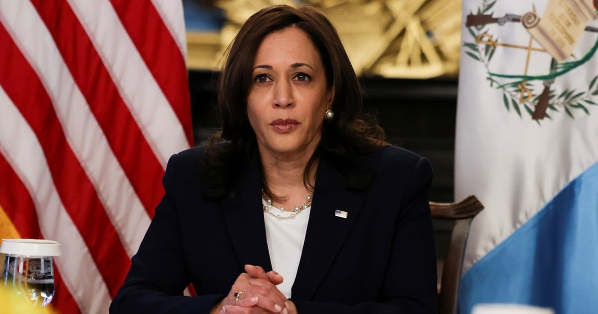 """Plane With Kamala Harris Onboard Forced To Turn Around After """"Technical Issue"""""""
