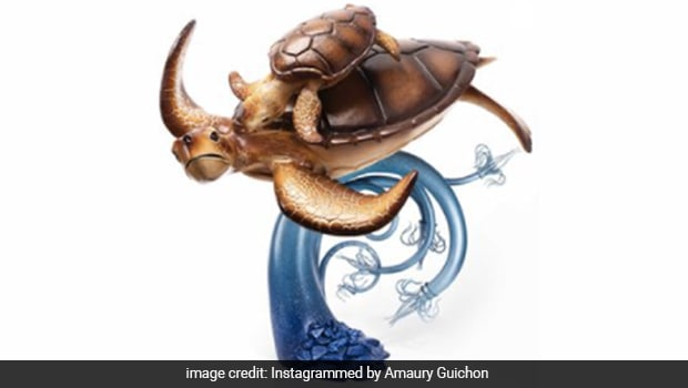 Chef Makes Sea Turtle From Chocolate; Internet Wonders How Is He Going To Eat