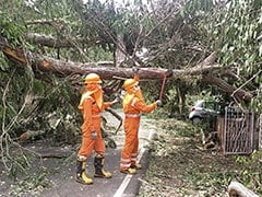 Goa Government Pegs Losses Due To Cyclone Tauktae At Rs 146 Crore