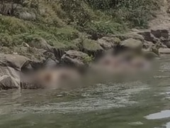 More Bodies Found Floating In Bihar; Shock, Health Concerns Among Locals