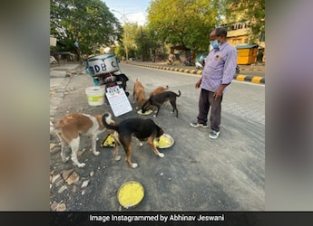 Watch: This Man From Nagpur Is Feeding 150 Dogs Daily For Last 11 Years
