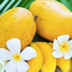 This Tweet On Mangoes Reminds Us Of Childhood And Math