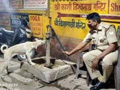 Watch: Varanasi Cop Helping Thirsty Dog Drink Water Wins Hearts On Internet