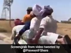 बाइक पर 4 लोगों के बैठने के बाद नहीं बची जगह, तो किया गजब जुगाड़, फिर 5वें को भी लेकर चल दिए ऐसे - देखें Shocking Video