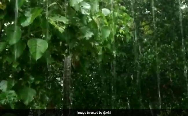 Heavy Rain Likely In Goa, Gujarat, Kerala, Konkan Region: 10 Key Updates