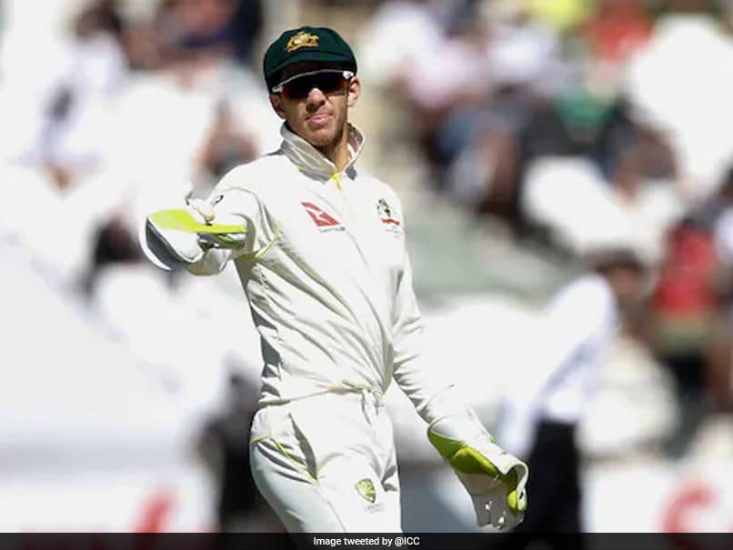 """Tim Paine, Trolled For India Test Series Comment, Says """"Most Of It I Deserve"""""""