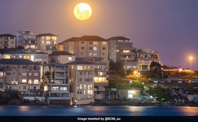 Lunar Eclipse 2021 Today: The Super Blood Moon In Pics And Videos