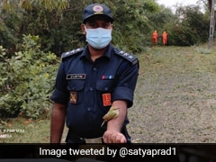 NDRF Tweets Heart-Warming Pic Of Bird Rescued After Cyclone. See Here
