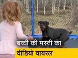 Video : अपने बेस्ट फ्रेंड रॉटवीलर के साथ ट्रैम्पोलीन पर मस्ती करती बच्ची का वीडियो वायरस