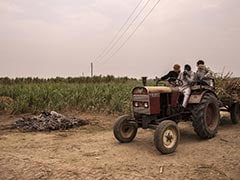 """""""Entire Families"""" Wiped Out By Covid In Rural India: Report"""