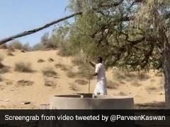 कुएं से पानी भरने के लिए गांव के शख्स ने किया गजब का जुगाड़, लोगों ने कहा- 'न्यूटन का तीसरा नियम' - देखें Video