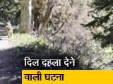 Video : टहल रहे शख्स के सामने आ गया पहाड़ी शेर, फिर दौड़ाया, कैमरे में कैद हुआ वाकया
