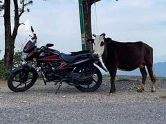 """It Happens Only In India: """"Choose Your Ride"""" From Ishaan Khatter's Pic"""