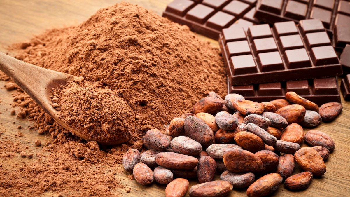 5 Best Cocoa Powder Options To Add Chocolate-y Goodness To Your Desserts