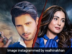 हिना खान ने शेयर किया 'पत्थर वरगी' का नया पोस्टर, कहा- इससे पहले की बहुत देर हो जाए...