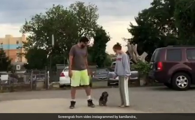 Viral Video: Dog's Reaction To 'Run In Opposite Directions' Challenge Has Twitter In Splits