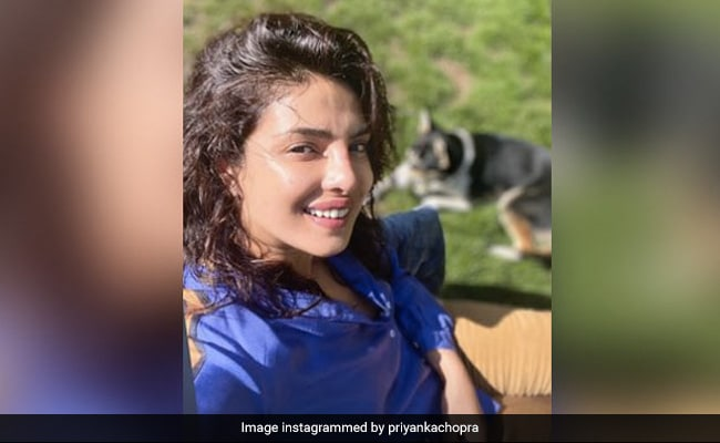 Just A Sun-Kissed Pic Of Priyanka Chopra With Her Adorable Pet Pooch Panda