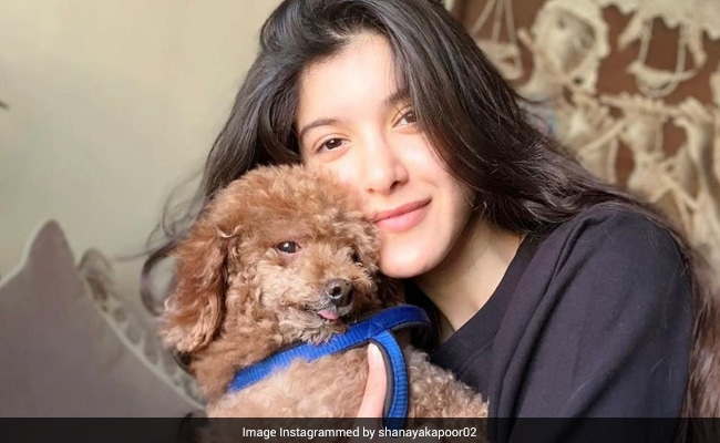 Shanaya Kapoor Mourns Pet Dog Scooby: 'You're Always Going To Be Home For Me'
