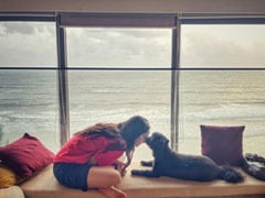 The Breathtaking View From Shraddha Kapoor's Seaside Apartment. See Pic